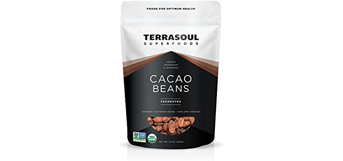 Pure Raw Cacao Beans